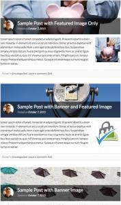 pmpro_memberlite-banner-blog